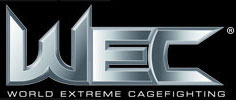 Wec_logo